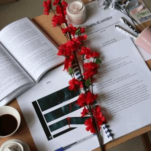 sweetbook it foglie di vernice